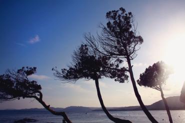 Corsica - Travels - Marine-Océane Vinot Photography